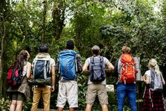 Diverse friends trekking together in a forest Royalty Free Stock Images