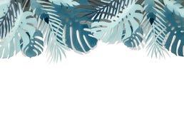 Diverse frontière tropicale de papier de feuilles de bleu de turquoise avec l'ombre, d'isolement sur le fond blanc photo stock