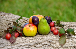 Diverse fruit. Plum, pear, apple on a wooden floor royalty free stock photos