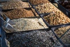 Diverse gebakken zaden en noten Royalty-vrije Stock Foto's