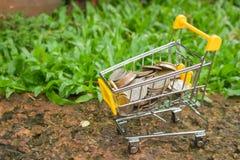 Diverse geldmuntstukken in geel miniboodschappenwagentje of supermarktkarretje Royalty-vrije Stock Afbeeldingen