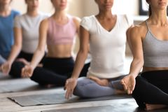 Diverse girls during yoga session meditate together. Diverse mixed race indian and caucasian ethnicity females sitting in row in lotus position practising yoga stock image