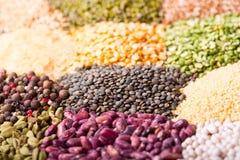 Diverse graangewassen, zaden, bonen en korrels stock foto