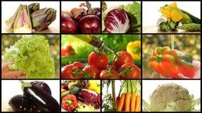 Diverse groentenmontering stock video