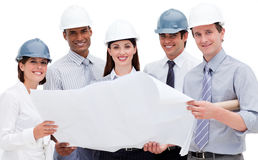 A diverse group of architects holding a blueprint Stock Images