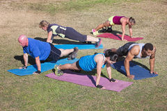 Diverse Group Doing Push-Ups Royalty Free Stock Image