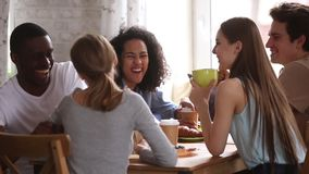 Diverse happy students talking joking having fun share cafe table. At group meeting, african and caucasian young friends laughing drinking coffee tea together stock video