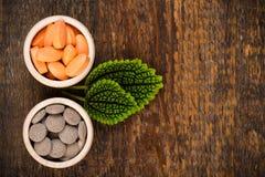 Diverse homeopathische geneeskunde met groene bladeren Stock Foto's