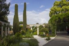 Diverse installaties in de serre van Parc Phoenix in Nice, royalty-vrije stock foto's