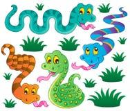 Diverse inzameling van het slangenthema   Stock Foto
