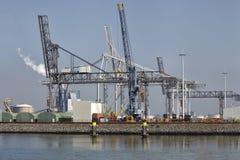 Diverse kranen in de haven van Rotterdam Stock Foto's