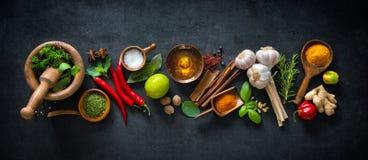 Diverse kruiden en kruiden Stock Foto