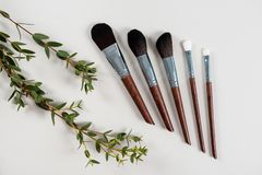 Diverse make-upborstels op grijze achtergrond stijl Manier visage Schoonheidsmiddelen stock afbeelding