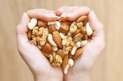 Het mengsel van noten Stock Afbeelding