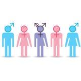 Diverse pictogrammen van geslachtsidentiteiten Stock Afbeeldingen