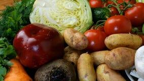 Diverse rauwe groenten voor het maken van groentesoep, borscht, of een vegetarische gezonde maaltijd Evenals dille, peterselie en stock video