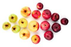 Diverse rijpe appelen Stock Afbeeldingen