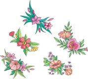 Diverse rosa blommor för prydnadar Royaltyfri Bild