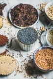 Diverse ruwe ongekookte korrels, bonen, graangewassen in kommen voor het koken Royalty-vrije Stock Fotografie