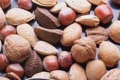 Diverse sélection nuts Photo stock