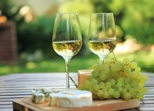 Diverse soorten kaas en witte wijn Stock Afbeelding