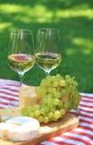 Diverse soorten kaas met witte wijn Stock Foto's