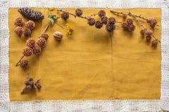 Diverse soorten kegels van over de hele wereld op een beige doek met ruimte voor inschrijving Stock Foto