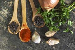 Diverse soorten kruiden Stock Afbeelding