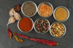Diverse soorten kruiden in glaskommen op een leiachtergrond Voorbereiding voor het koken van kruidig voedsel Kruiden voor hoofdko Royalty-vrije Stock Foto