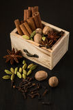 Diverse spices in a wooden box: cinnamon, nutmeg, cardamom, cloves, anise stars Stock Image