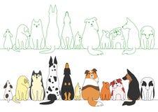 Diverse stellende honden op een rij Stock Fotografie