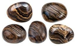 Diverse stromatolite stromatolith halfedelstenen stock afbeeldingen