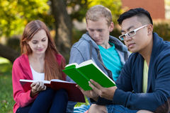 Diverse students on fresh air Royalty Free Stock Photo