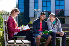 Diverse students during sunny day Royalty Free Stock Image