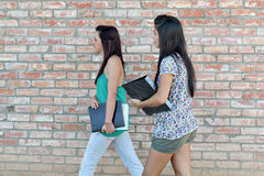 Diverse Teens at School. Teenage Girls walking at school and holding books Stock Images