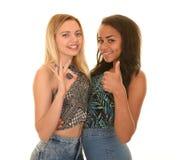Diverse tienermeisjes Royalty-vrije Stock Afbeelding