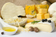Diverse types van kaas met kruid stock afbeeldingen