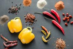 Diverse types van peper op de donkere houten achtergrond Royalty-vrije Stock Foto