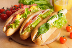 Diverse types van sandwiches Royalty-vrije Stock Afbeeldingen