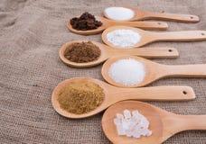 Diverse Types van Suiker VIII Stock Foto's