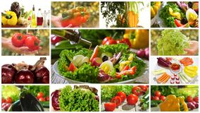Diverse vegetables and mixed salad montage stock video footage