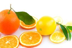 Diverse verse citrusvruchten en plakken met groene bladeren Royalty-vrije Stock Afbeelding