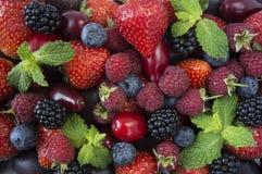 Diverse verse de zomerbessen en vruchten Rijpe aardbeien, frambozen, braambes; rode bessen, pruim en bosbessen stock afbeelding