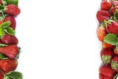 Diverse verse de zomervruchten Rijpe aardbeien op witte achtergrond Aardbeien bij grens van beeld met exemplaarruimte voor tekst Royalty-vrije Stock Afbeelding