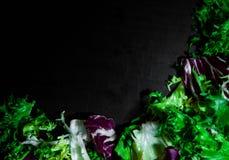 Diverse verse saladebladeren met sla, radicchio, en raket op donkere houten achtergrond met exemplaarruimte Royalty-vrije Stock Afbeelding