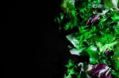 Diverse verse saladebladeren met sla, radicchio, en raket op donkere houten achtergrond met exemplaarruimte Royalty-vrije Stock Afbeeldingen
