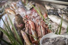 Diverse verse zeevruchten en vissen in vissenmarkt stock afbeeldingen