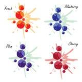 Diverse vruchten met plons Stock Afbeelding