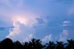 Diverse wolkenvormingen over palmen bij zonsondergang Royalty-vrije Stock Foto