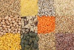 Diverse zaden en korrels Royalty-vrije Stock Foto